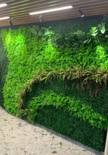Зелени стени / Green walls
